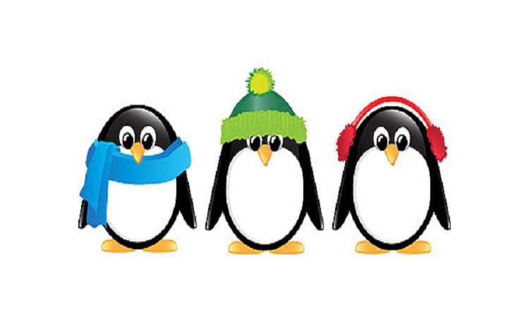 1 penguins isolated jane