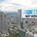 Seo bất động sản hiệu quả vượt qua sự lao đao của thị trường