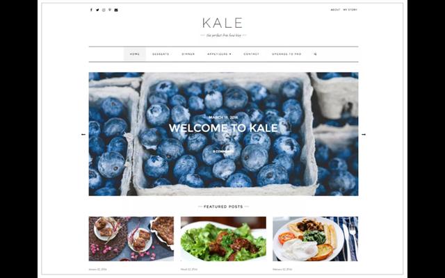 Theme WordPress: Kale